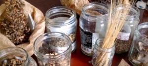 Plein de graines, en pots, en sachets