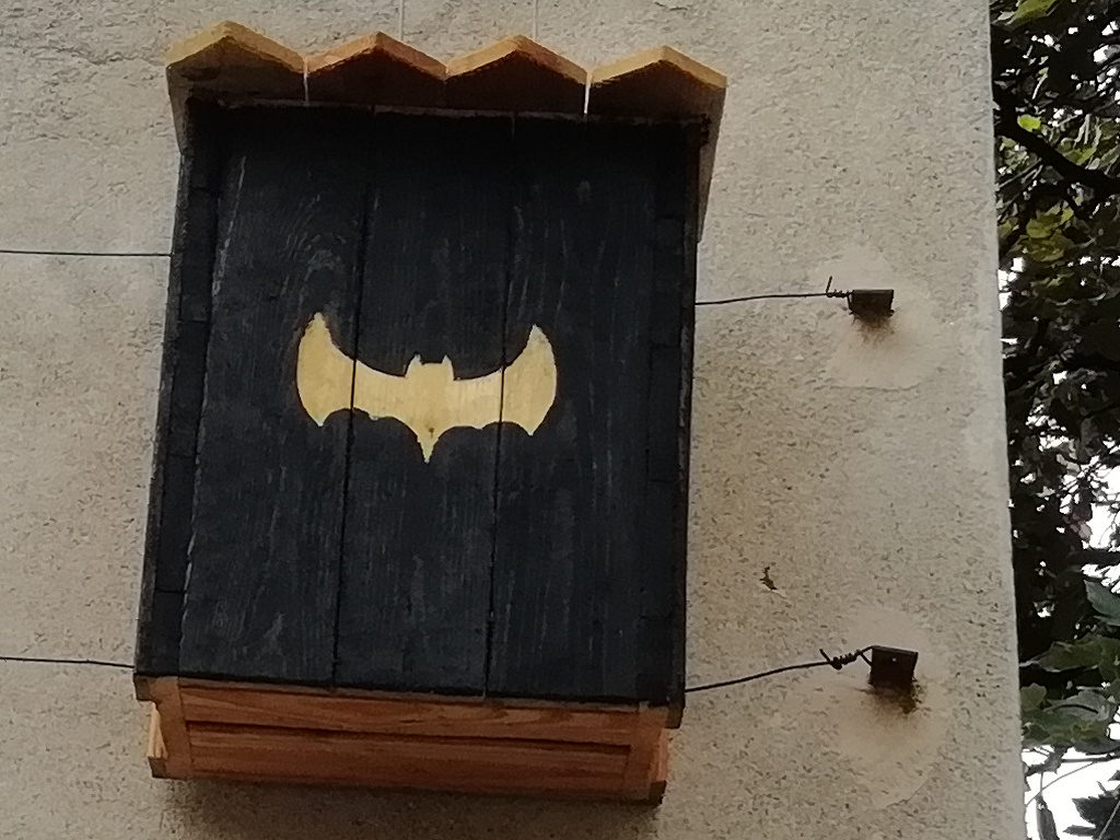 """""""Bat cave"""", l'hôtel à chauve souris !"""