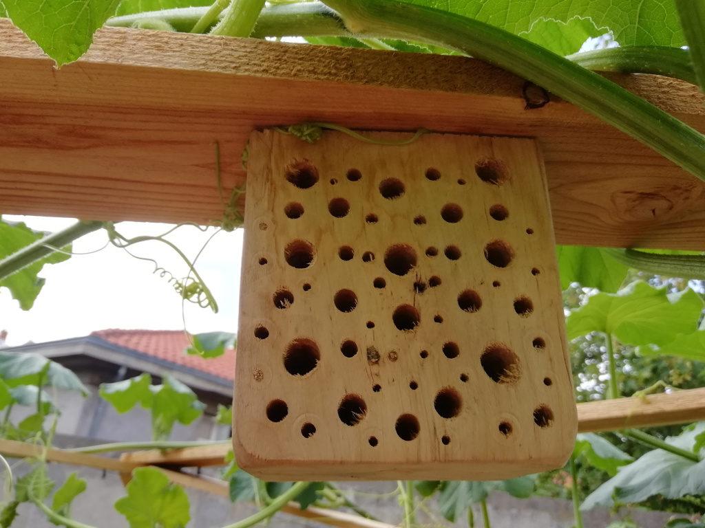 Hôtel à insecte habité (4 petits trous ont été comblés).