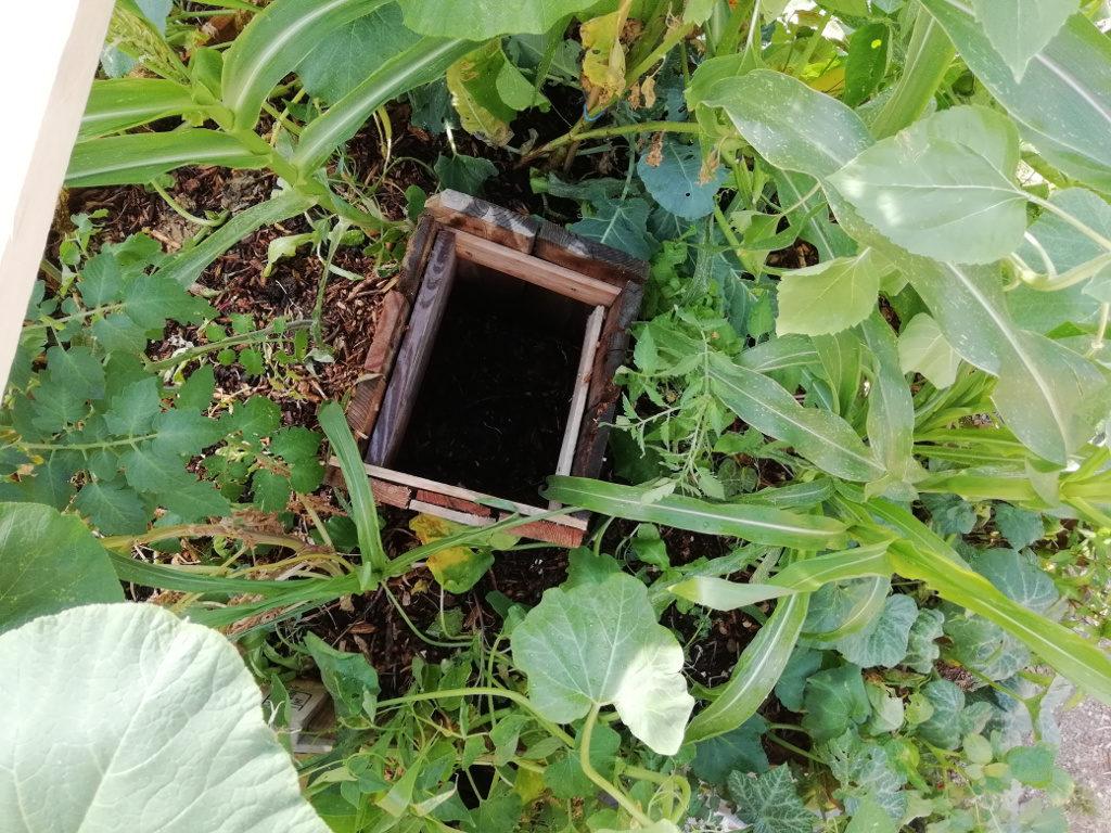 Le réservoir à nutriments, rempli de compost, au cœur du bac.